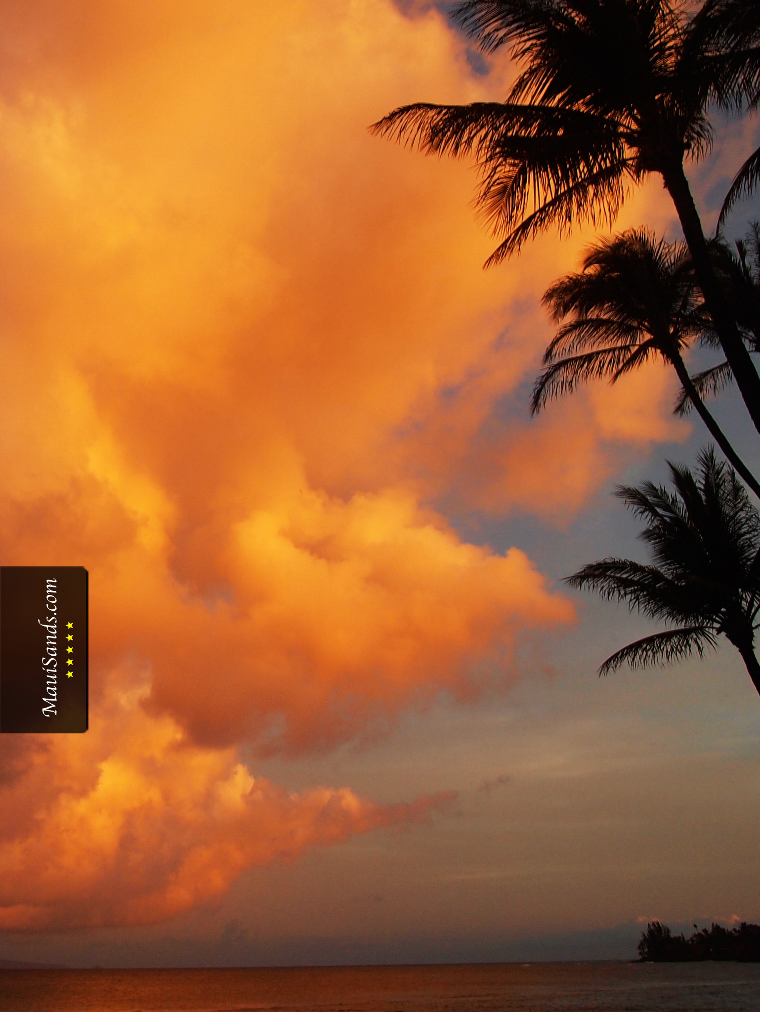 Click Here To Download The Free Hawaii Sunset HD Background Wallpaper